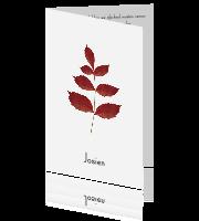 099e0dd9f95 Moderne rouwkaart met blad in herfstkleuren