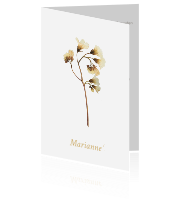 7b3232e20e8 Mooie rouwkaart met gedroogde veldbloemen